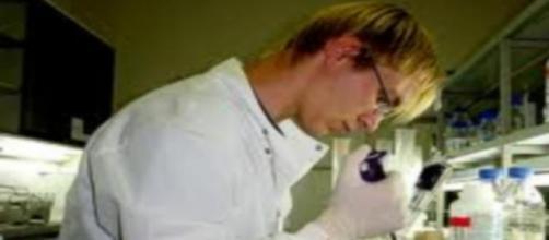Científico efectuando un cultivo de células