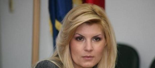 dosarul Bute, Elena Udrea,