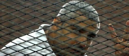 Mohamed Fahmy sera libéré.