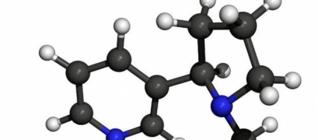 Estructura de la molécula de nicotina
