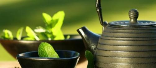 Los mejores tés para perder grasa