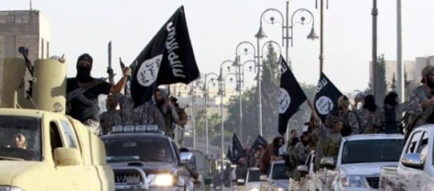 """Células jihadistas """"recrutam""""."""