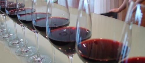 Una copa de vino al dia es muy buena para la salud