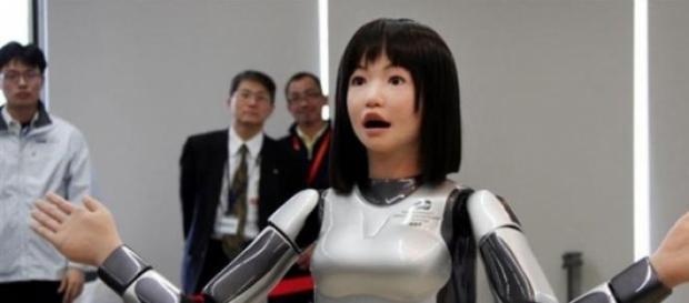 Diez androides políglotas atenderán el hotel