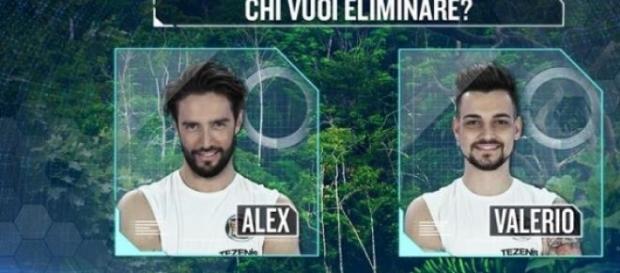 Chi vuoi eliminare Alex Belli o Valerio Scanu?