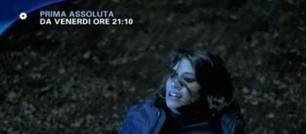 Il Bosco, la fiction tv di Canale 5