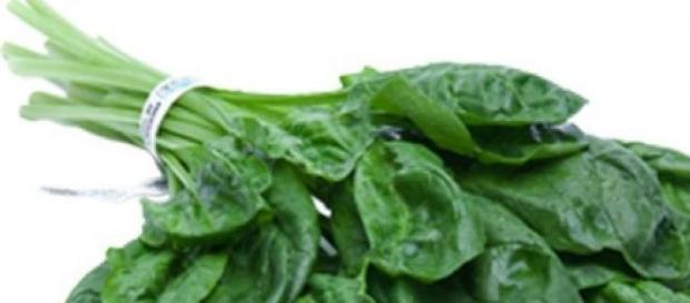 Spanacul, antioxidant si revigorant
