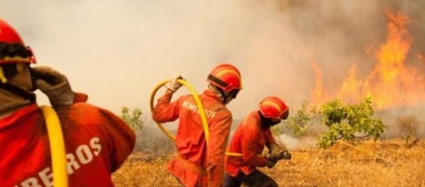 Incêndios tiveram origem em queimadas