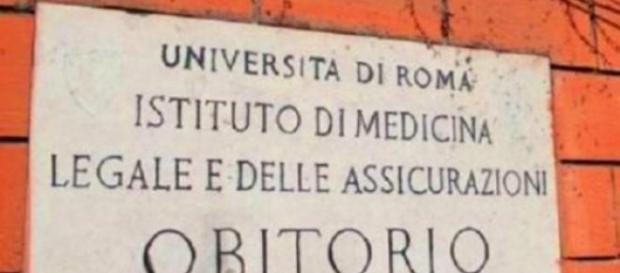 Roma, cadaveri abbandonati a La Sapienza