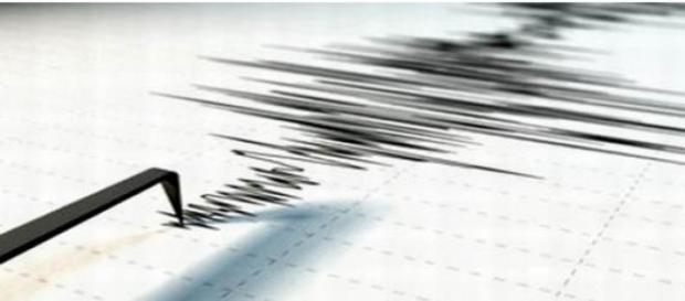 Cutremur de 4.7 grade pe scara Richter