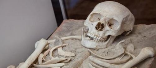 Confirma-se que se são os restos mortais do autor.
