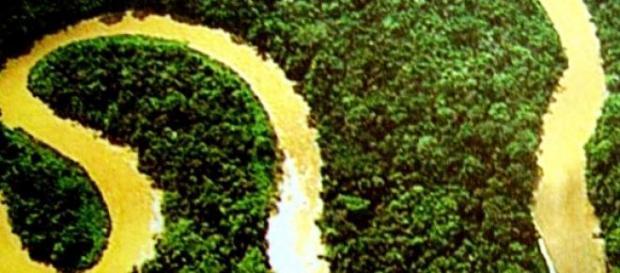 Amazonas, 1/5 del agua dulce corriente del planeta