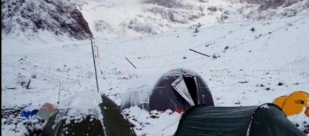 Antártida sufre consecuencias del cambio climático