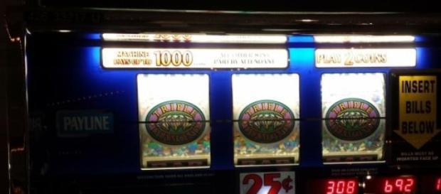 Bookmaker scommesse sportive, giochi, slot: Fisco