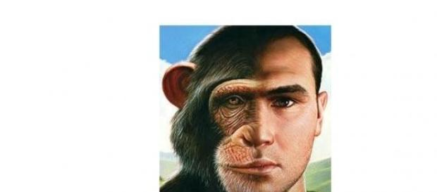 Evolutia se vede in genele noastre