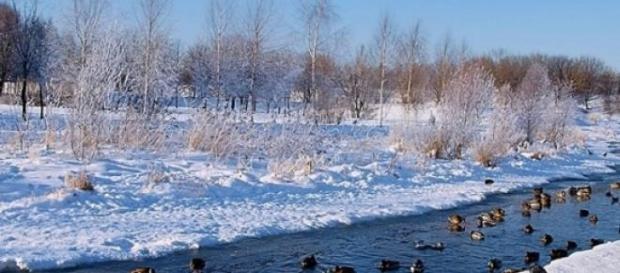 Gurile Dunarii, o tinta a Rusiei