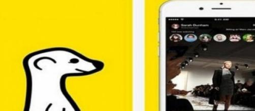 Meerkat, l'app del live streaming immediato
