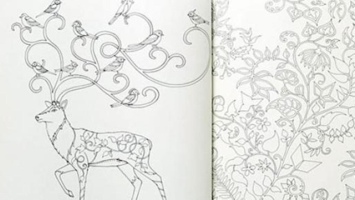 Colorear solo para niños? Los ilustradores están creando libros para ...