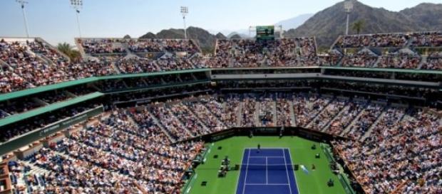 Djokovic si Federer vor juca finala