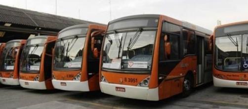 Ônibus devem ser divididos em quatro categorias