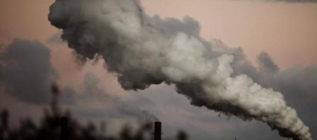 As alterações climáticas preocupam organizações