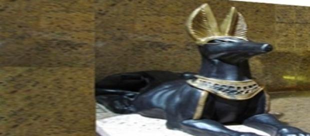 Anubis - egipski bóg śmierci. fot.J.Lampert