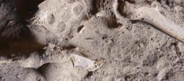 Restos óseos de hace 4200 años con cáncer
