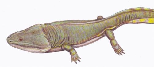 Predador gigante viveu ao lado dos dinossauros.