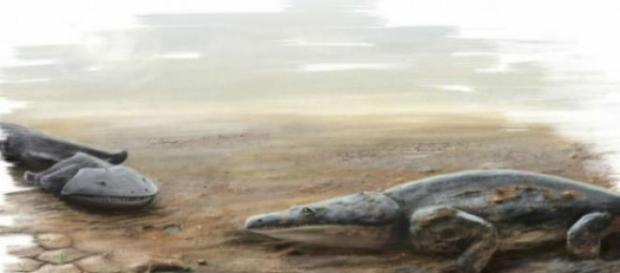 Era un animal que habitaba en ríos y lagos