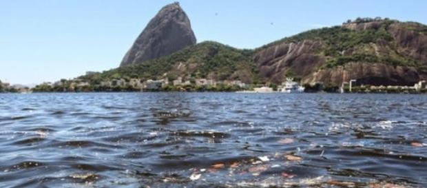 Poluição da Baía de Guanabara (Foto: Reprodução)