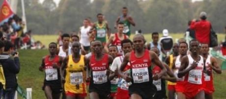 Mundiais de Corta-Mato dominados pelos africanos