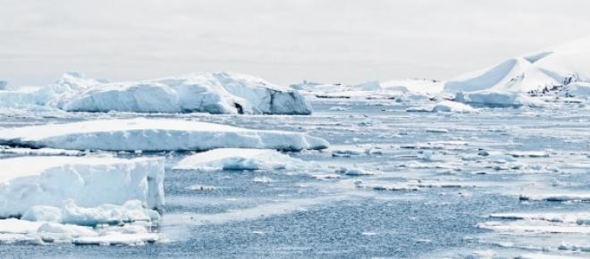 17,5 Grad Celsius: Temperaturrekord in der Antarktis