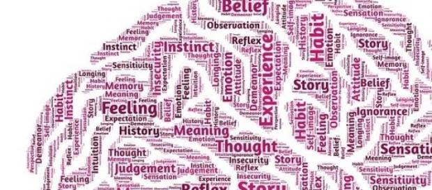 Inteligência pode evoluir com novas aprendizagens