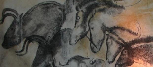 La caverne de Chauvet, un atout pour le tourisme.
