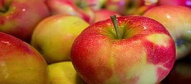 Suspensa a importação de maçãs da Argentina