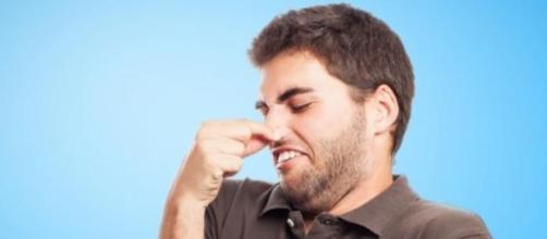 Cheirar flatulência vale mais de 30 mil euros