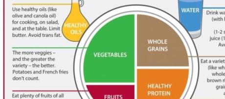 A representação de comida saudável por Harvard.