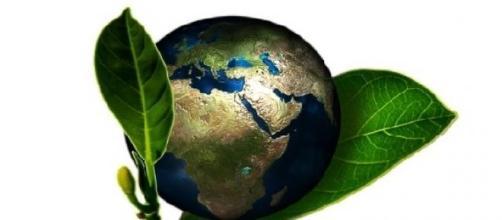 Engenharia Ambiental no Brasil