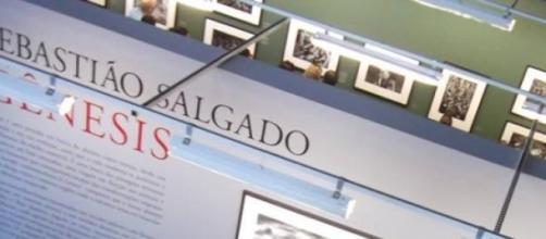 Fotos de Sebastião Salgado em exposição