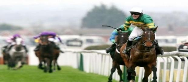 AP McCoy in 2010 with Don't Push It