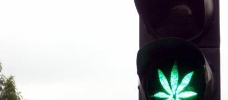 A cannabis é uma droga ilegal em Portugal.