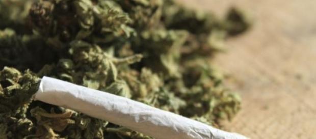La Marijuana dans la médicine?