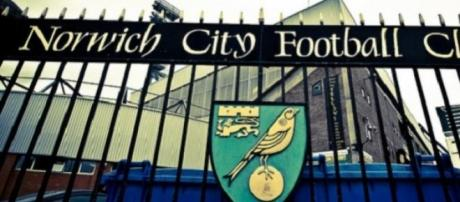 Norwich lie second in the Championship table