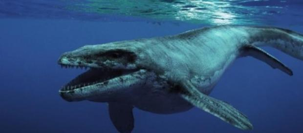 Era un animal prehistórico impresionante y feroz