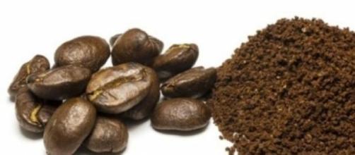 Dia 14 de abril celebra a importância do café