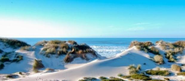 Osso da Baleia é praia Dourada desde 1998