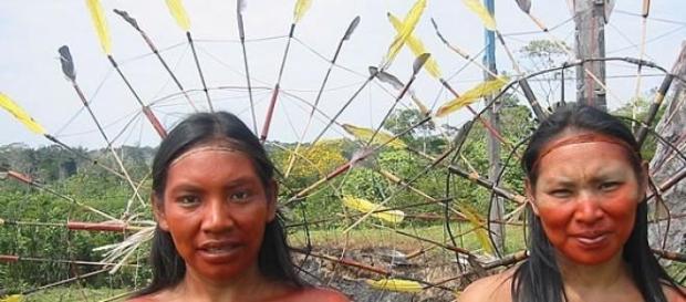 A cultura indígena tem muito a ensinar.