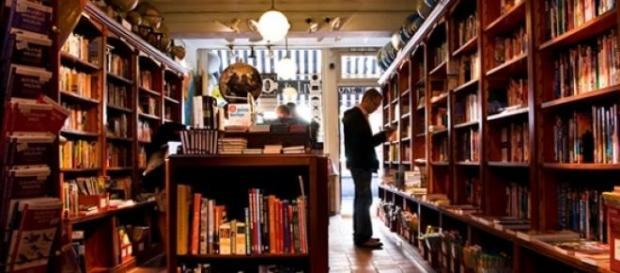 Mała, przytulna księgarnia