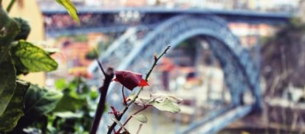 O Porto, uma cidade turística