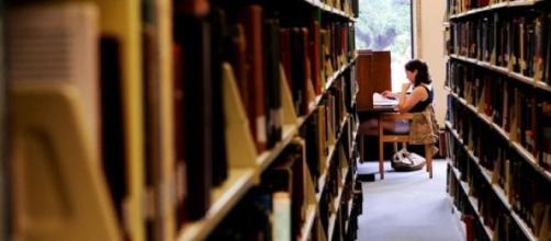 'Library Hotel' é ideal para amantes de livros.